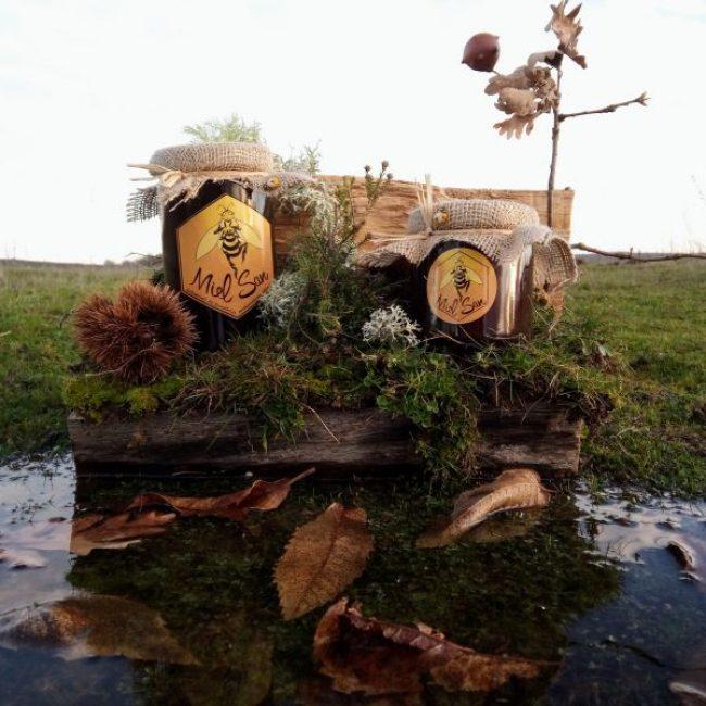 5ª edición del Zángano de Oro premia las mejores mieles de Zamora