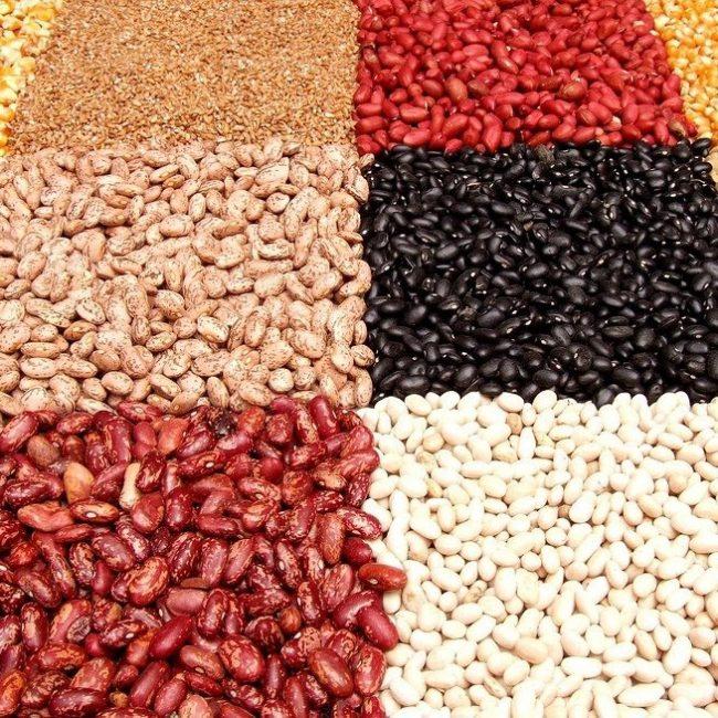 Castilla y León quiere doblar la producción de legumbres
