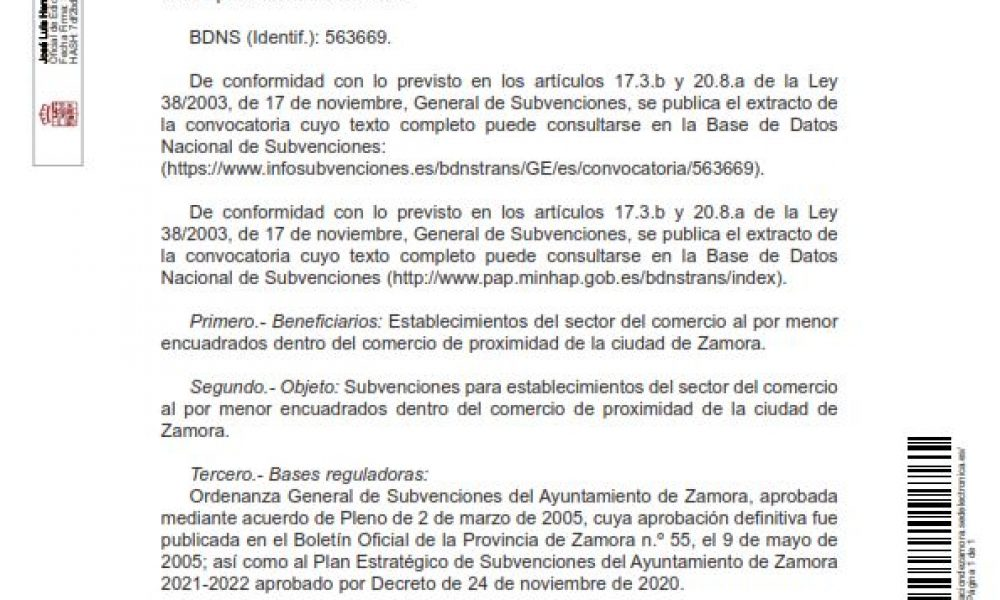 Plan relanza, ayudas a la hostelería y pequeño comercio de Zamora