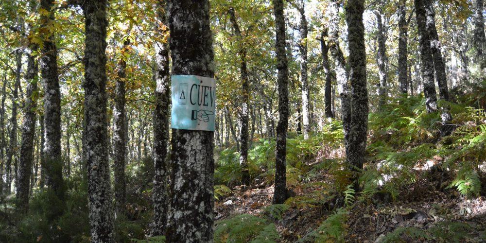 Villardeciervos ya cuenta con su primera ruta señalizada.