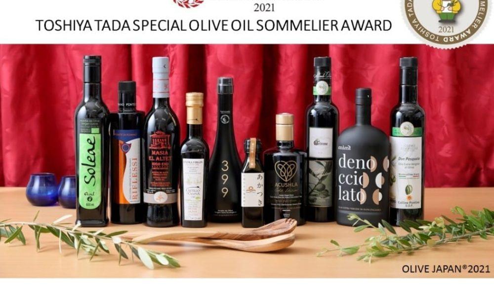 Concurso Internacional Olive Japan 2021